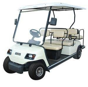 Golf Cart Rentals, READ ITEM DESCRIPTION before ordering