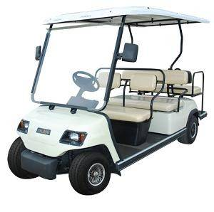 6 Passenger Golf Cart Street Legal READ DETAILS BEFORE ORDERING...NO DISCOUNTS ON GOLF CARTS...DO NOT RENT May 19th to June 1st..see notes for availablility-0
